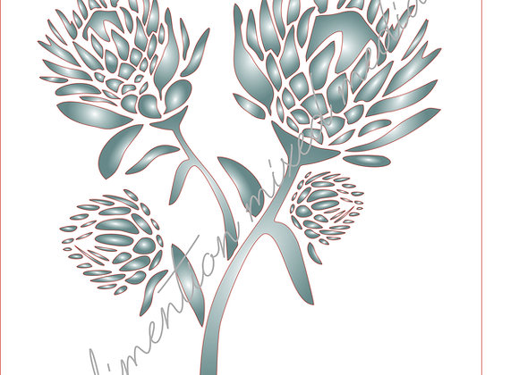 1[1] Protea Bunch 1 / Size  A4