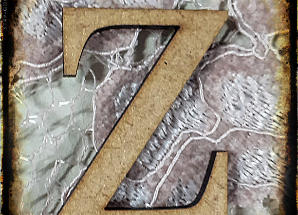 Z.SMALL LETTER