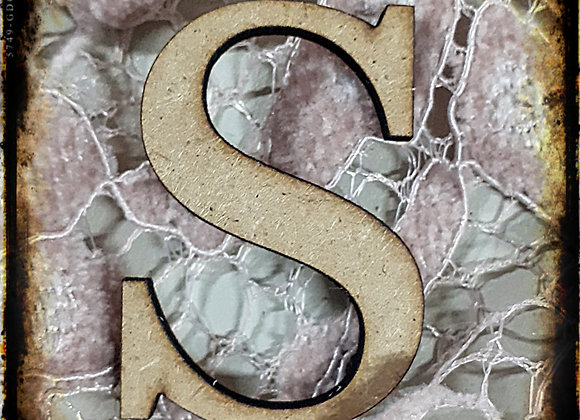 S.SMALL LETTER