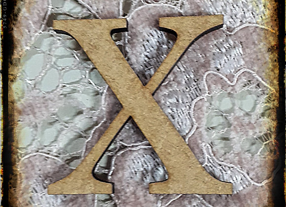 X.SMALL LETTER