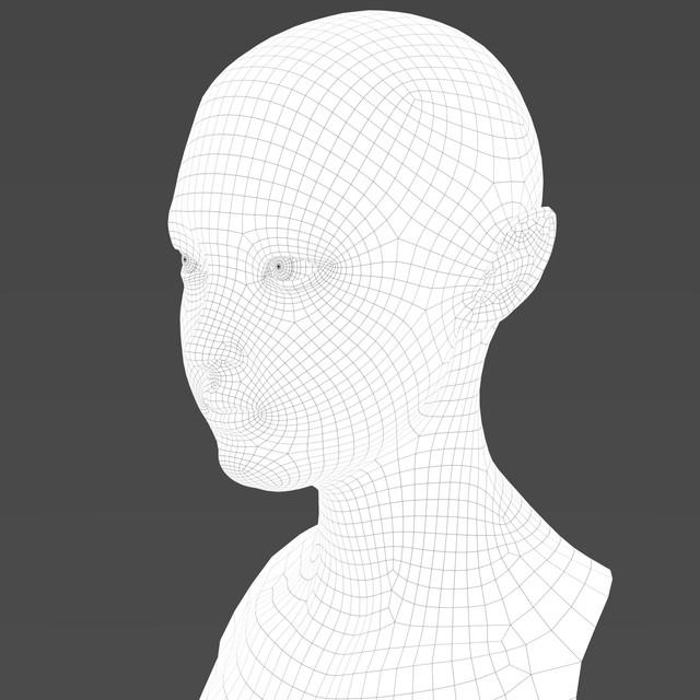 wireframe_sideface.jpg