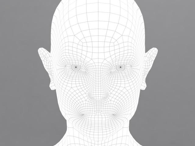 wireframe2.jpg