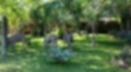 doringpoort 5.jpg