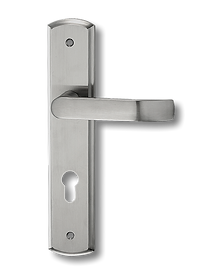 Stainless Steel On Plate Lever Handle DFX002