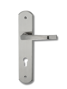 Stainless Steel On Plate Lever Handle DFX003