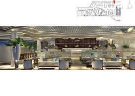 Vip Airport 1