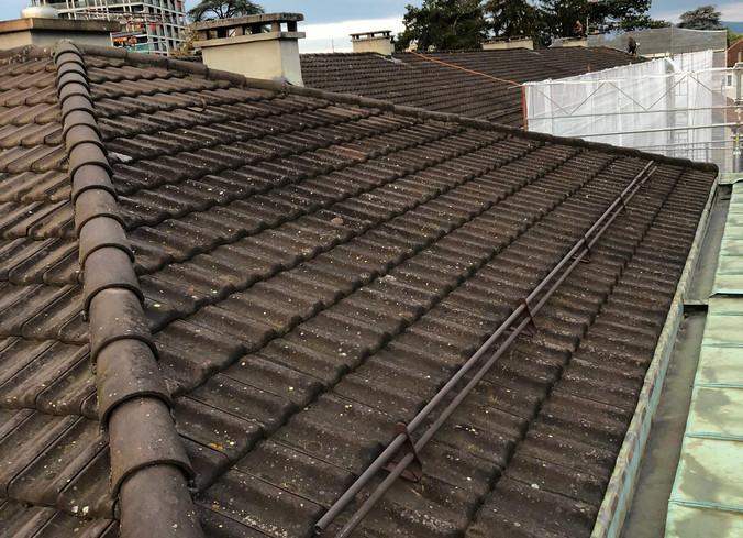Paquerette avant rénovation toiture
