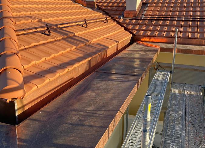 Paquerette après rénovation toiture