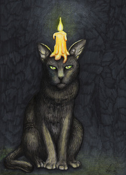 Katzengeburtstag
