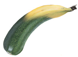 Zucchane oder Banini