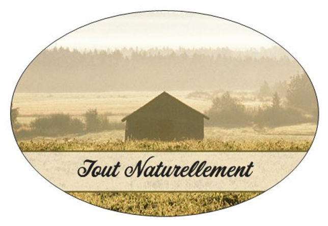 Logo de Tout Naturellement