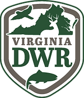 dwr-logo.png
