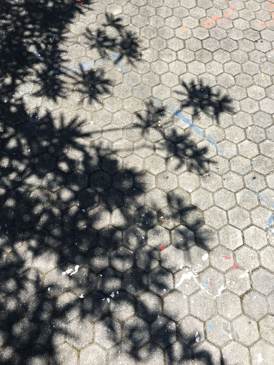 Kyoto Honeycomb Flooring