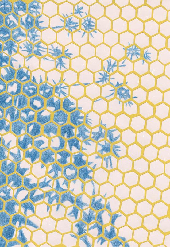 Geometric Honeycomb Collage