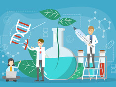 Fine-Tuning Nature: Plans to Allow the Use of Genome Editing in Crop Production