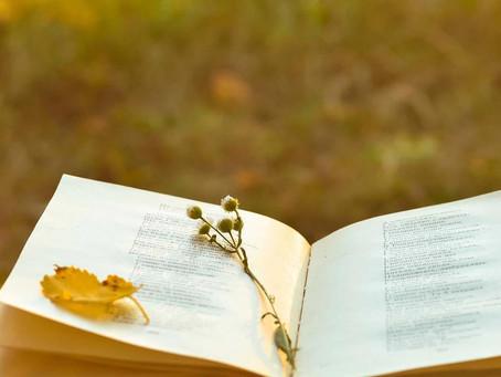 Три поетеси за Световния ден на поезията