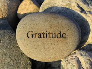 Kritajna Hum - I am gratitude!