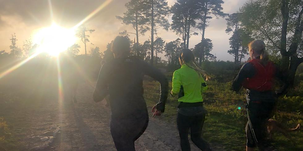 Black Down 10km Sunset Trail Run   (1)