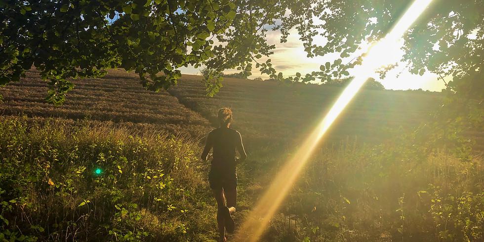 Pitch Hill and Winterfold Woods 8km Sunset Run