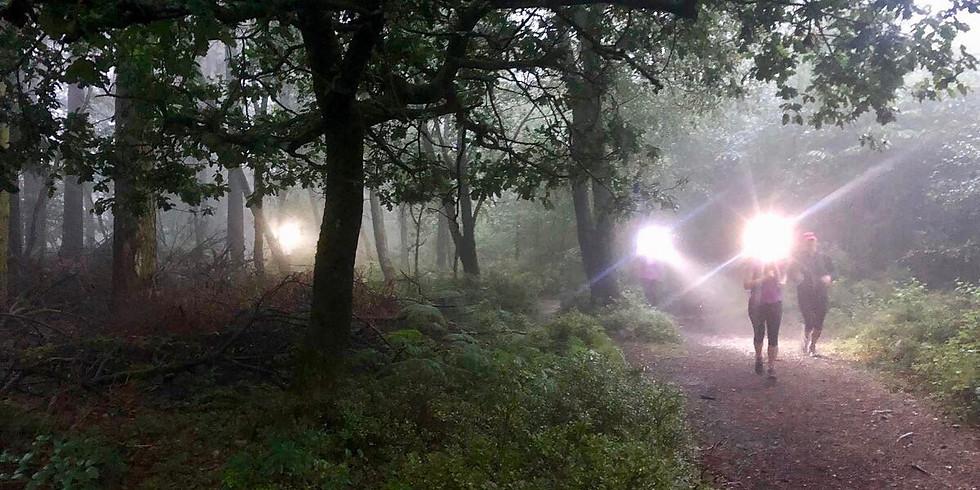 Bignor Hill to Houghton Forest 10km Women's Night Trail Run