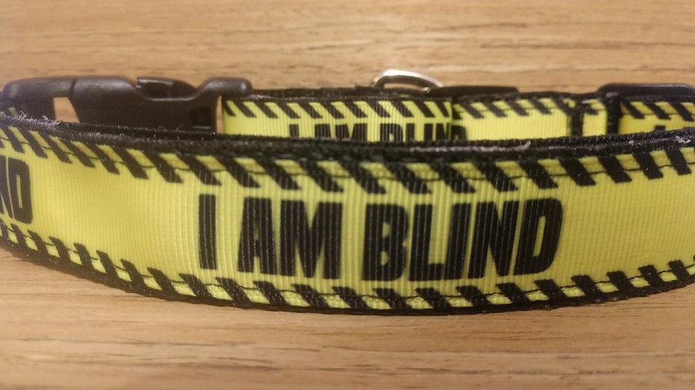 Service Collar and Leash Combo/ Size Large/ Blind