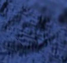 Screen Shot 2020-10-02 at 7.11.33 AM.png
