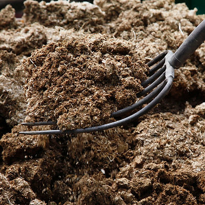 exotic manure best mushroom substrate gr