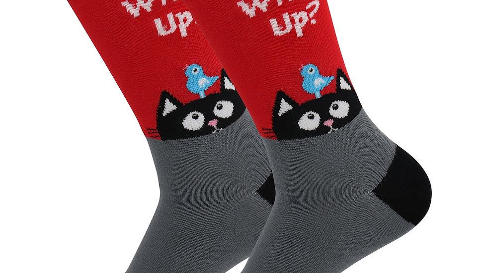 Sick Socks – Cat (What's Up) – Animal Pets Casual Dress Socks