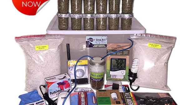 Mega-Mushroom Grow Kit  (Free Shipping)