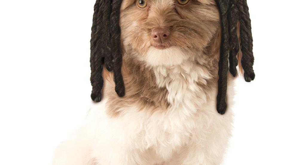 Dreadlock- Dog Wig