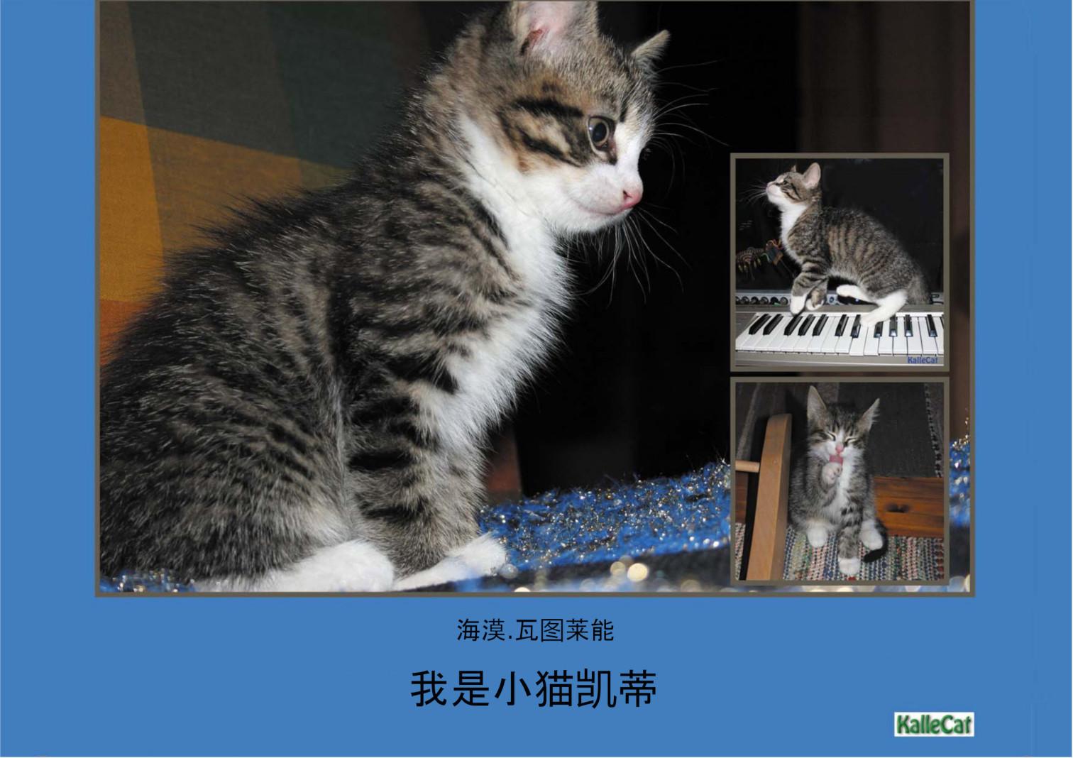 我是小猫凯蒂: 照片书