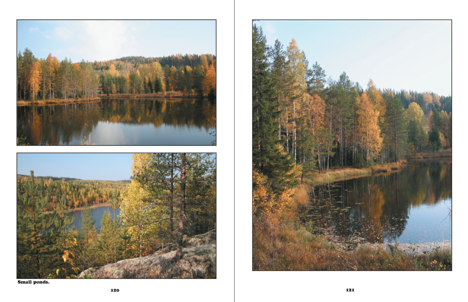 Finland The Four Seasons of Nature