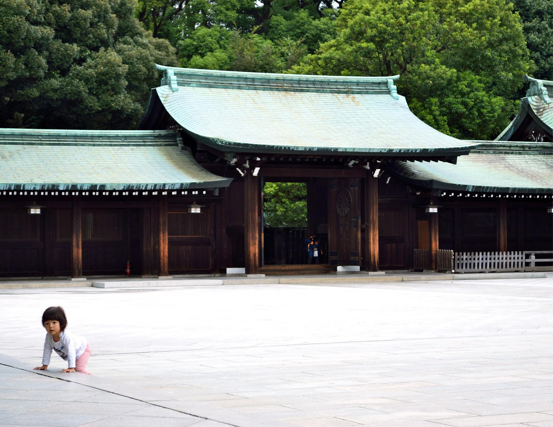 Temple Meiji-jingu / Tokyo