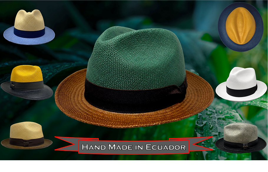 Panama Hats Slide.png