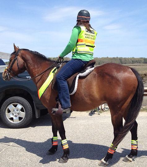 Hi Viz Horse Tack