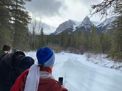 Winter Wilderness & Wildlife Walking Tour