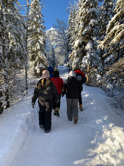 Wilderness & Wildlife Walking Tour