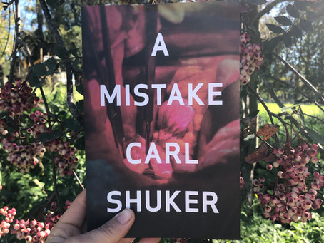 Review: A Mistake by Carl Shuker