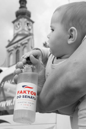 Faktor do Senátu | VOLBY 2018