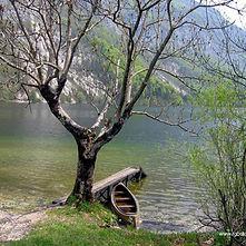 Paisible Vue sur le lac