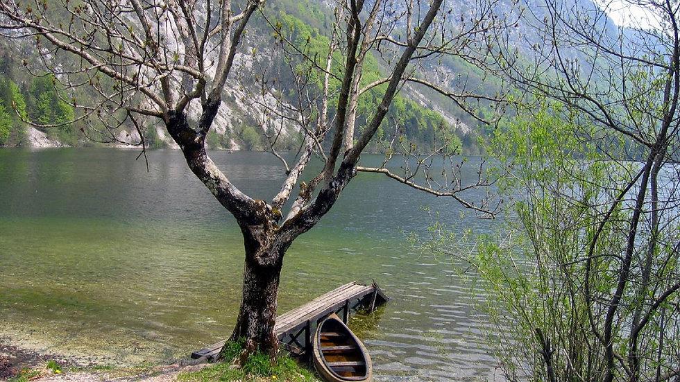 Bohinjsko jezero, Ukanc