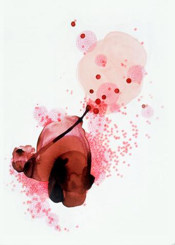 cherrybear.jpg