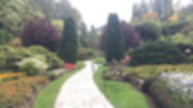 landscaping companies woodland hills