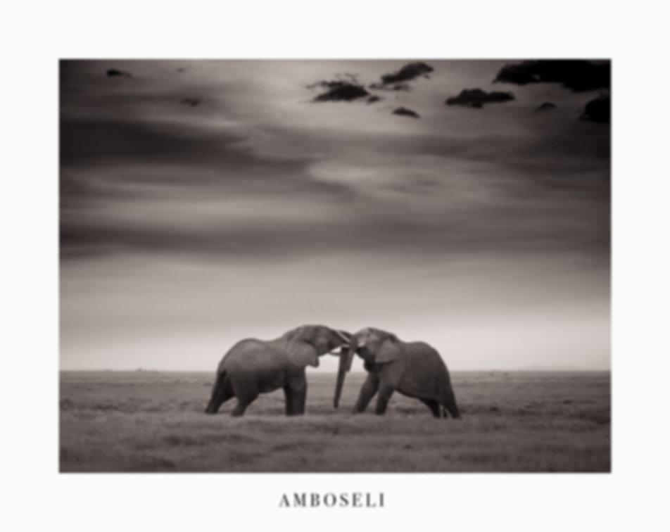 Amboseli-_6453953.jpg