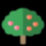 tree-species-07.png
