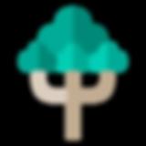 tree-species-41.png