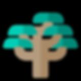 tree-species-23.png