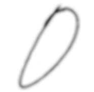 ottokaji_logo_final.png