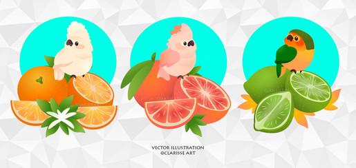 birds_and_fruits___kawaii_by_clarisse2da