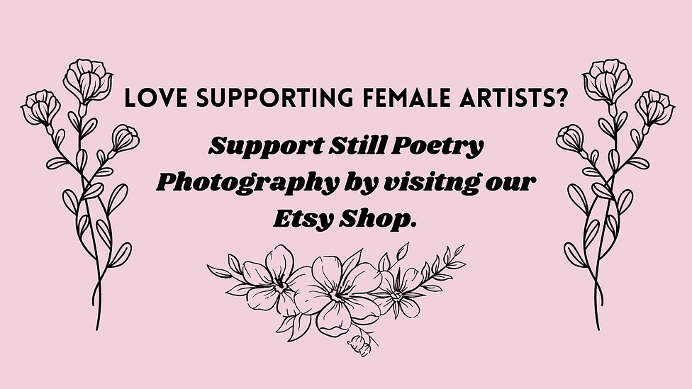 support female artist wix banner.png